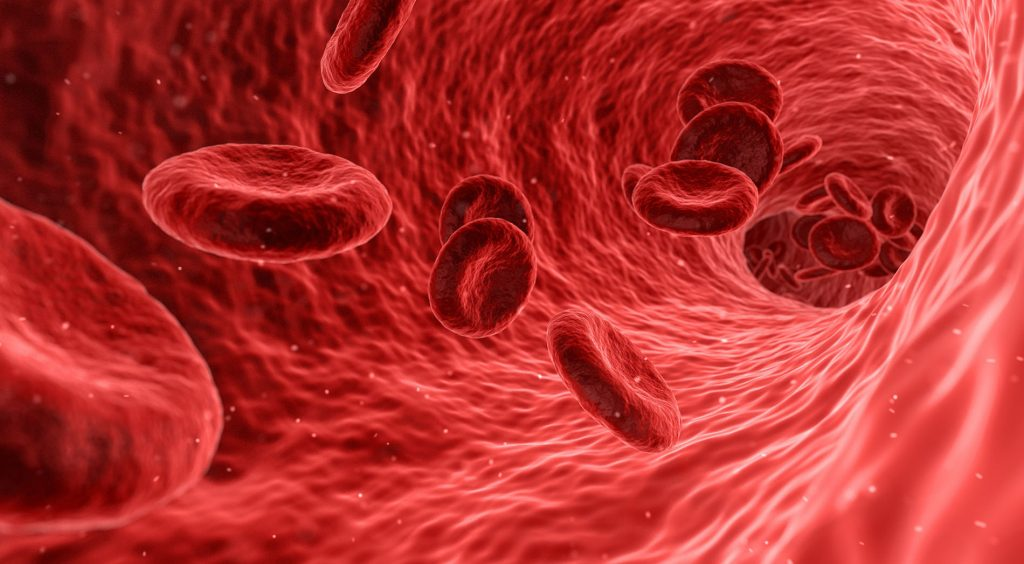 Tips on Essential Vitamins – Iron